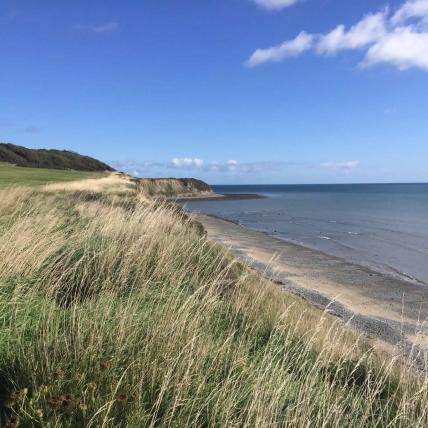 Dunany Beach
